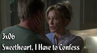 3x06 - Sweetheart, I Have to Confess Logos3ep06
